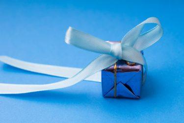 ペーパードライバー教習で学ぶ将来のクルマの素材はクモの糸。